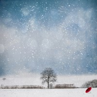 The Red Umbrella by Philippe Sainte-Laudy - various sizes