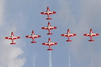 Snowbirds 431 Air Squadron of the Canadian Air Force Fine Art Print