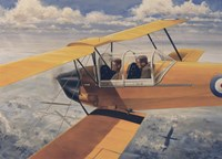 De Havilland DH82 Tiger Moth basic Trainer Biplane from the 1930's Fine Art Print