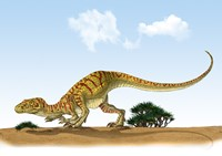 Eoraptor, an early Dinosaur that Lived During the Late Triassic Period - various sizes