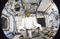 A Humanoid Robot in the Destiny Laboratory of the International Space Station - various sizes