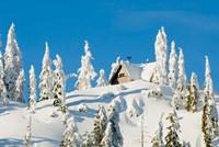Mountain cabin, Seymour Mountain, British Columbia Fine Art Print