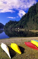 Canoeing, Clayoquot Wilderness, British Columbia by Michael DeFreitas - various sizes