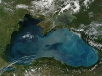 Phytoplankton Bloom in the Black Sea - various sizes