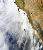 A Glory is Seen above a Layer of Stratocumulus Clouds over the Pacific Ocean - various sizes