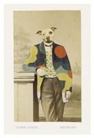 George Fine Art Print