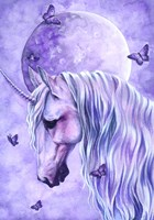 Moonlit Magic Fine Art Print