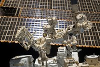 Dextre, the Canadian Space Agency's Robotic Handyman - various sizes