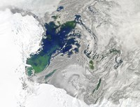 Satellite view of the Ross Sea, Antarctica - various sizes
