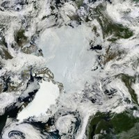 Satellite view of the North Pole - various sizes