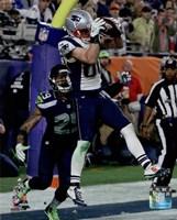 Danny Amendola Touchdown Super Bowl XLIX Fine Art Print