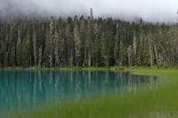 Blue glacial lake, evergreen forest, British Columbia Fine Art Print