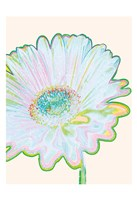 Pop Daisy Fine Art Print