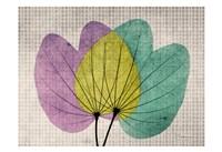 "19"" x 13"" Orchid Art"