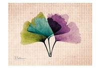 SoHo Ginko Fine Art Print