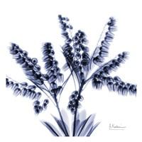 "Lily of the Valley Bush by Albert Koetsier - 13"" x 13"""