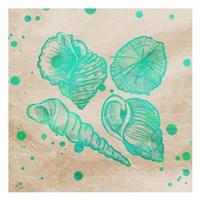 Splat Shells on Sand I Framed Print