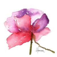 Paragon in Pink Fine Art Print