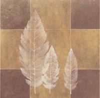 Foliage I Fine Art Print