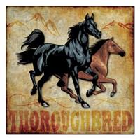 """Thoroughbred 01 by Melody Hogan - 13"""" x 13"""""""