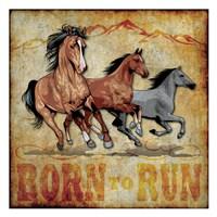 "Born to Run 01 by Melody Hogan - 13"" x 13"""