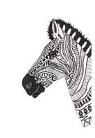 Lone Zebra Fine Art Print