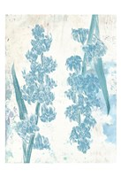 "Floral Blues by Sheldon Lewis - 13"" x 19"""