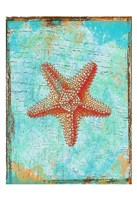 "Tropical Star by Sheldon Lewis - 13"" x 19"""