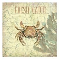 Fresh Catch Framed Print