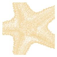"Nautical Star by Sheldon Lewis - 13"" x 13"", FulcrumGallery.com brand"