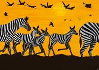 Zebra Family Fine Art Print