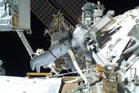 Astronaut doing Extravehicular Activity - various sizes, FulcrumGallery.com brand