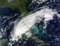 Hurricane Paula - various sizes - $47.49