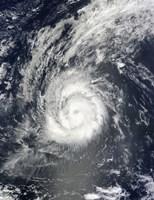 Hurricane Julia - various sizes - $47.99