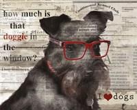 Doggie in the Window Fine Art Print
