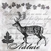 Stag II by Andrea Haase - various sizes, FulcrumGallery.com brand