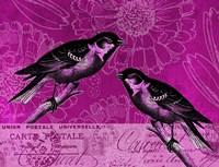 Vintage Pink Birds Fine Art Print