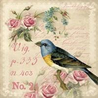 Vintage Bird Fine Art Print