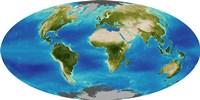 Average Plant Growth of the Earth - various sizes - $47.99