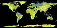 Digital Elevation Model of the Continents on Earth - various sizes, FulcrumGallery.com brand