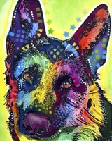 German Shepherd 1 Fine Art Print