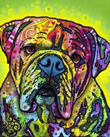 Hey Bulldog Fine Art Print
