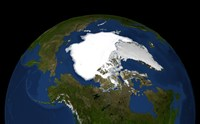 Arctic Sea Ice in 2005 - various sizes, FulcrumGallery.com brand