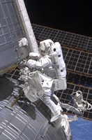 Astronaut and Extravehicular Activity - various sizes, FulcrumGallery.com brand