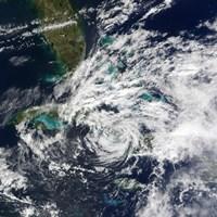Hurricane Paloma - various sizes - $47.49