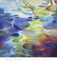 Ornamental Pond 3 Fine Art Print