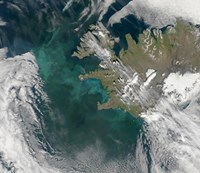 Phytoplankton Bloom in the North Atlantic Ocean - various sizes