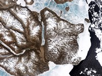 Sea Ice lines the Shoreline in Eastern Greenland - various sizes