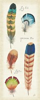 Ornithology IV Panel by Daphne Brissonnet - various sizes