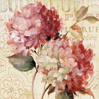 Harmonious V v.2 Fine Art Print